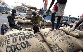 En Côte d'Ivoire, le cacao et la noix de cajou restent à quai